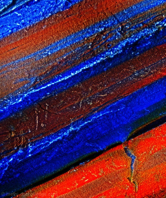 Study In Red And Blue #5