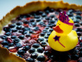 Blueberry Fairy Goes for a Swim on Pastry Pond