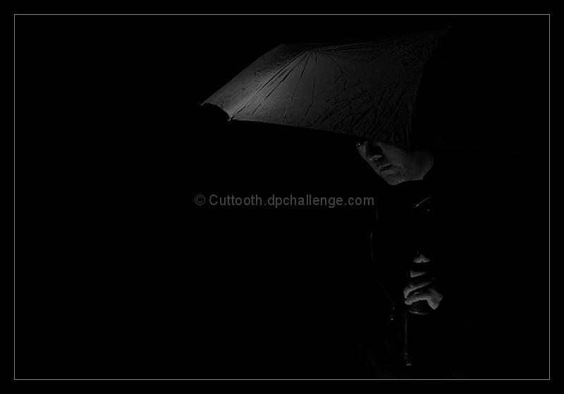 Quiet Apprehension
