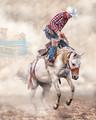 Ride-em Cowboy