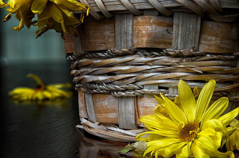 a basket of bruised blooms