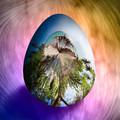 Egg Centric