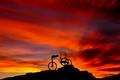 Sunset Carrier
