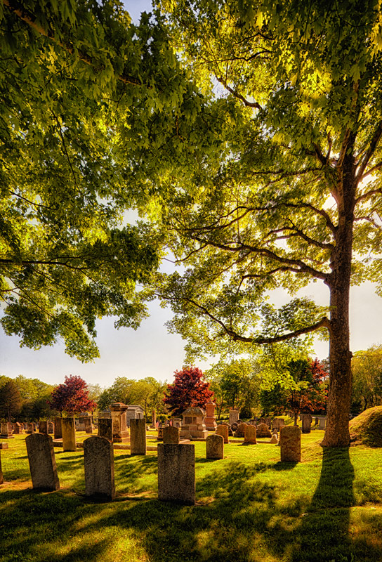 Eternal rest grant them, O Lord, and us the springing of the year...