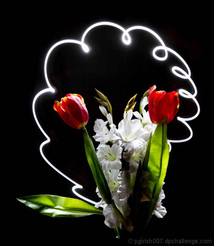 Secret Life of flower in night!
