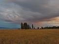 Yellowstone Dreamscape