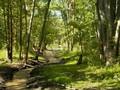 Lameroux Creek