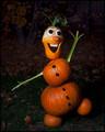 Olaf Arrived Early