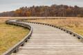 The Bog Boardwalk