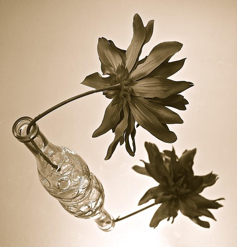 Vase flower mirror