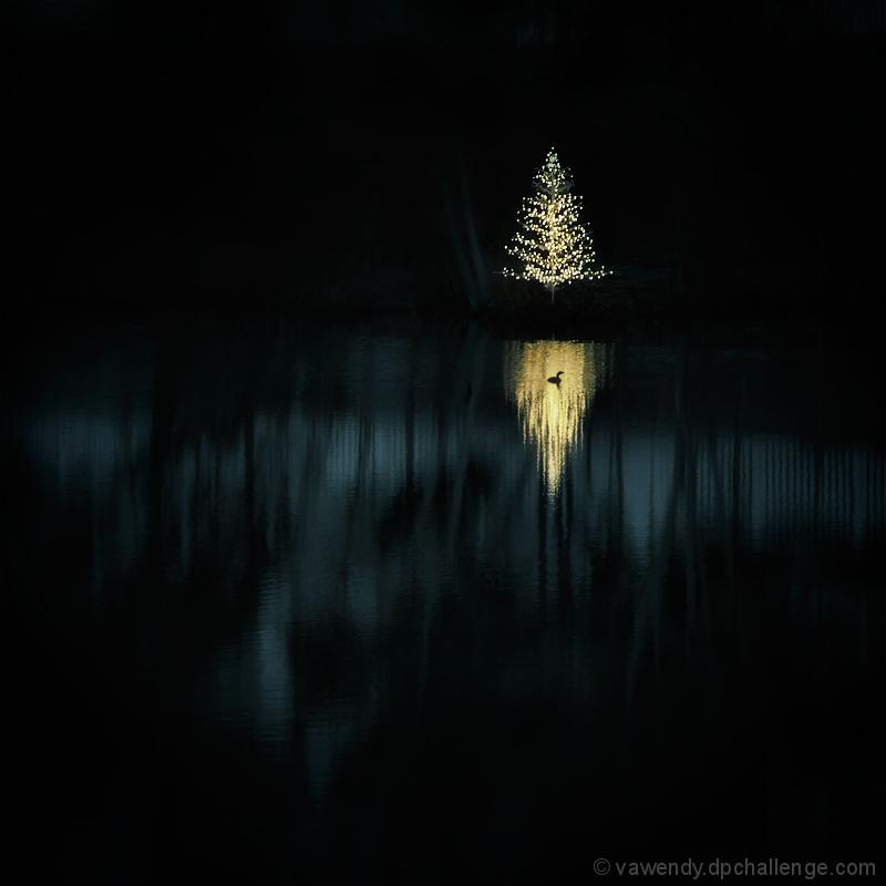 Silent Night (Feliz Naviduck)