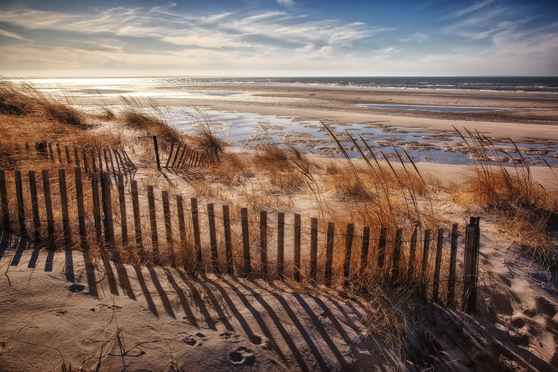 Dune Fence & Tide Flats, Early Spring