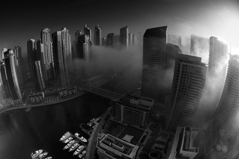 The Dawn Wind