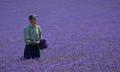 Lavender Field Farmer