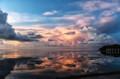 In The Florida Sun.....