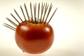 Punk Tomato