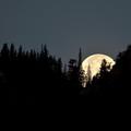 moon-oct