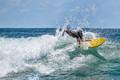 Christmas Day Surf