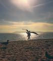 #Birdman