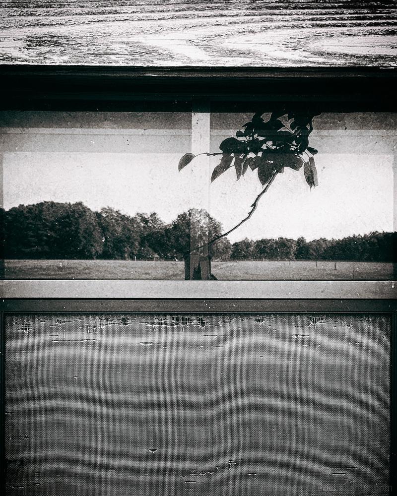 Landscape in Portrait Orientation