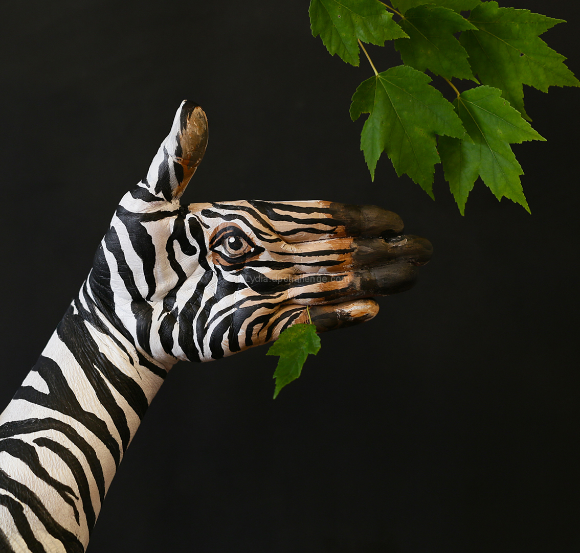 Zebra at Lunchtime