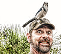 A BIRD JUST LANDED ON MY HEAD!