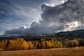 Clearing Storm, Aspens, Dunderberg Meadow, Eastern Sierra