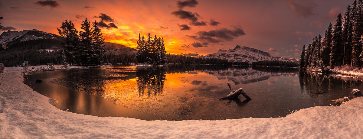 Winter's Wonders