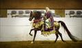 Horsewoman in Native Arab Costume