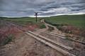 Palouse Tracks