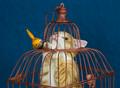 Bird Cage?