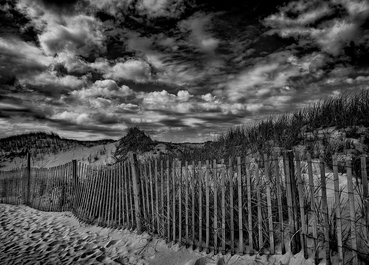 Dune Fence, Chapin Beach