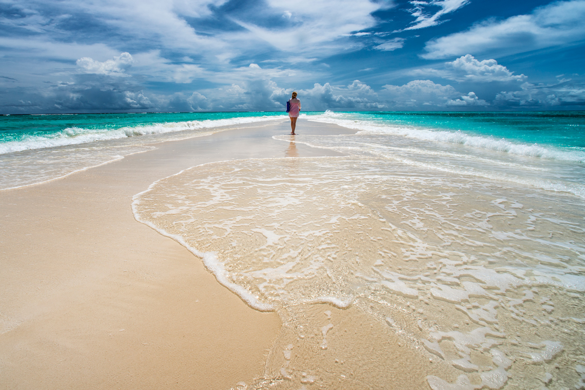 As I Ebb'd with the Ocean of Life - Walt Whitman