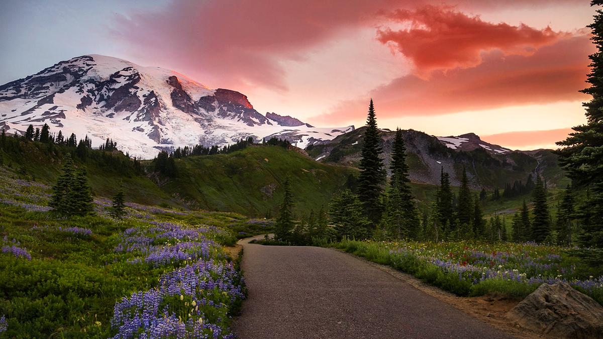 Run to the mountains