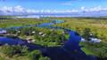 Where the Lake Meets the Swamp