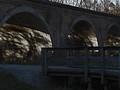 Late Fall Bridge