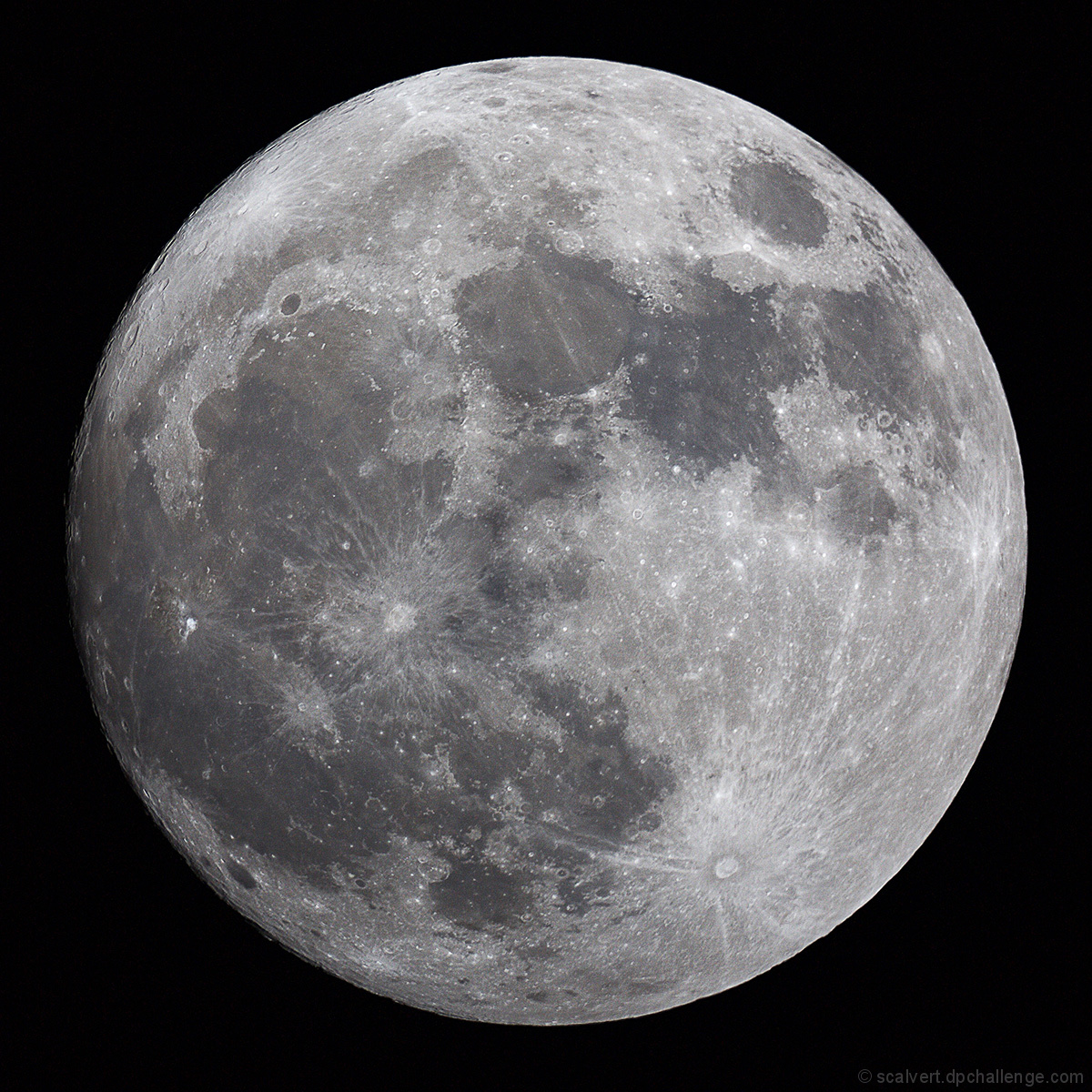 Luna Illuminated