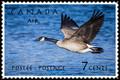 Canada Postage Stamp � Canada Goose, 7c, 1951