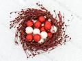 Christmas Nest