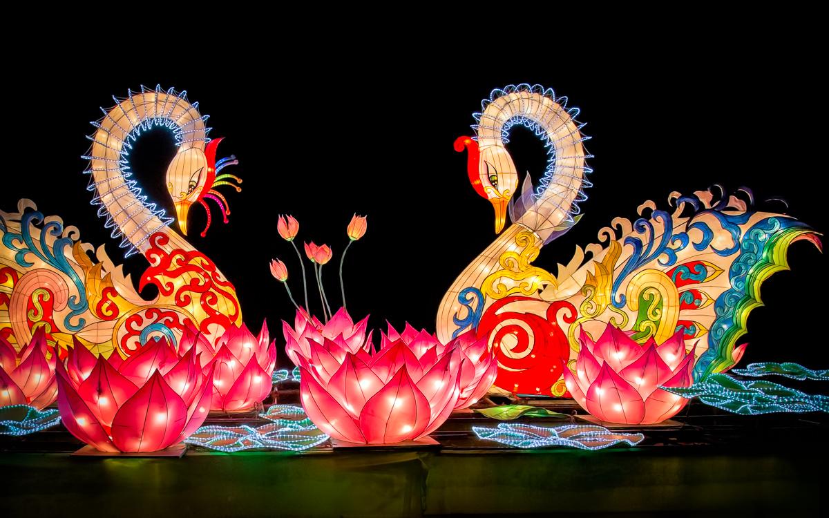 Chinese Lantern Holiday Display