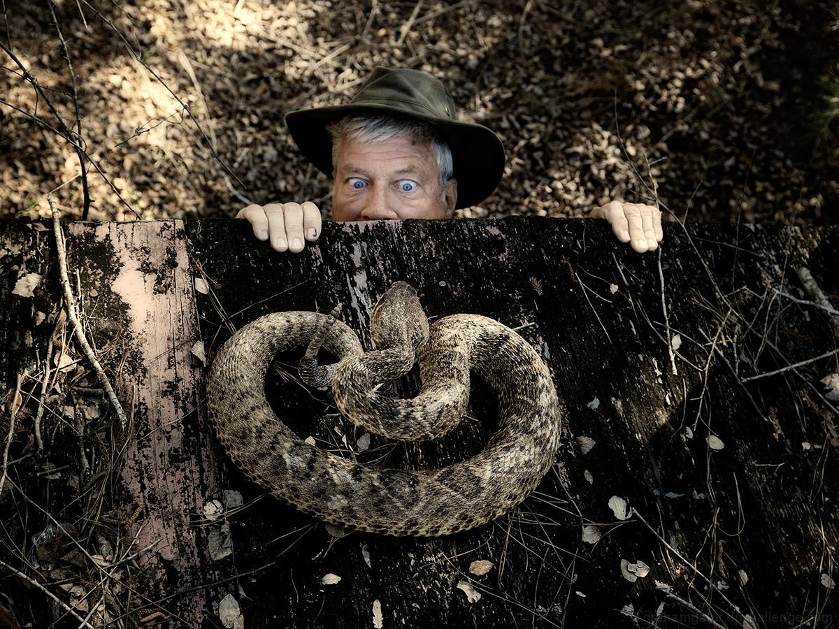 YIKES, I Hate Snakes (Ophidiophobia)
