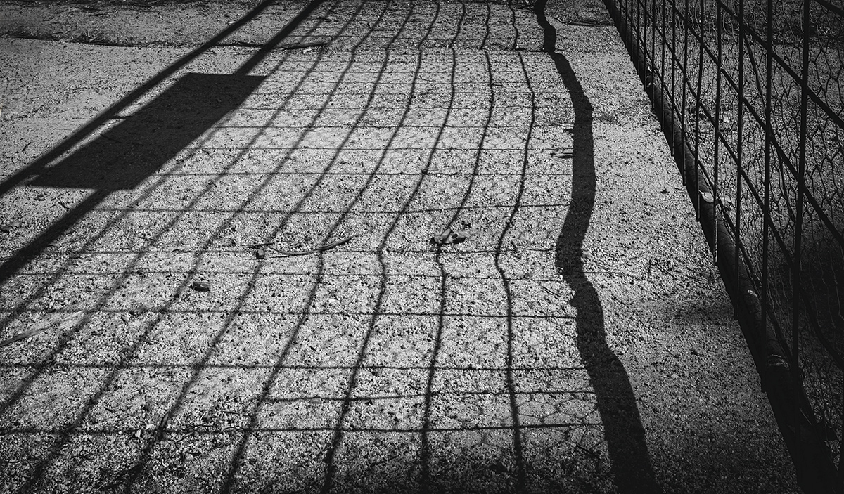 Gated Lines
