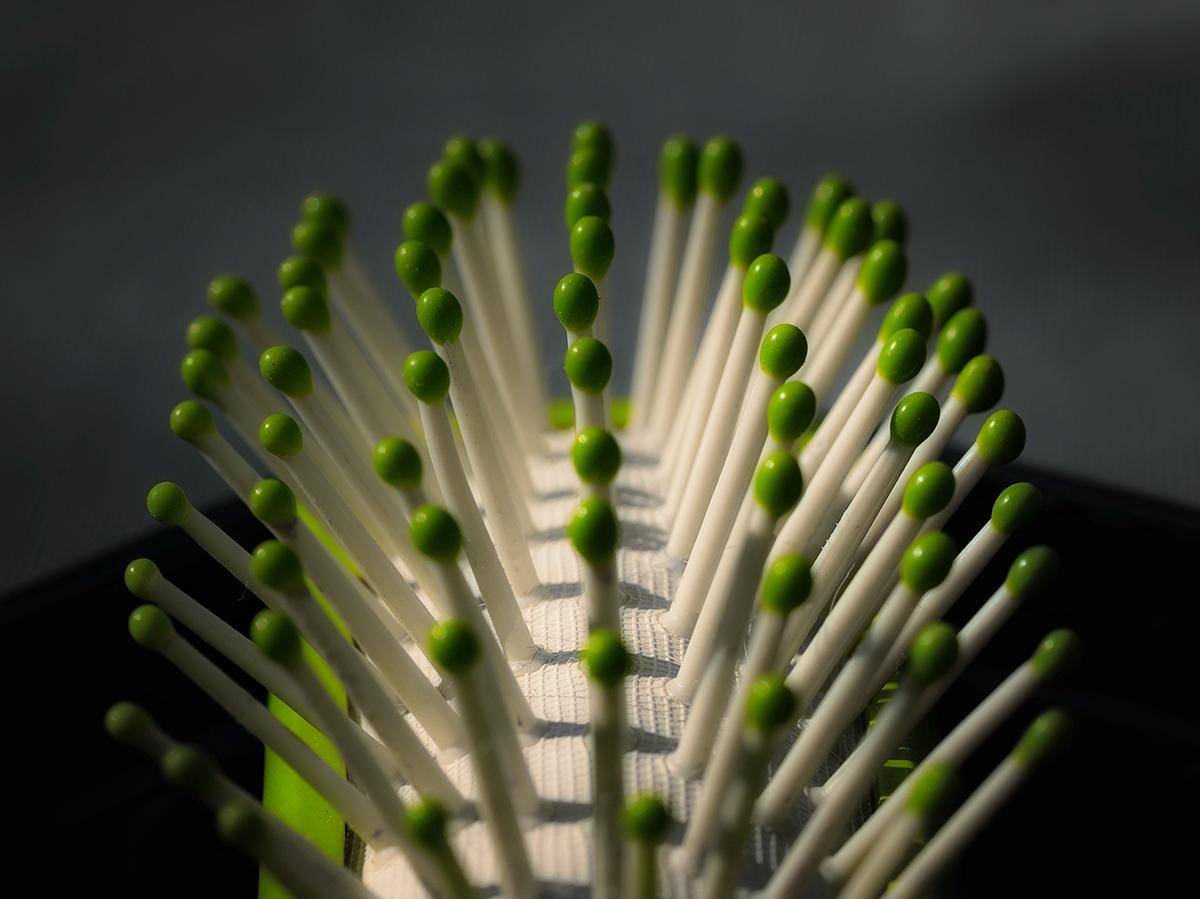 the green regime