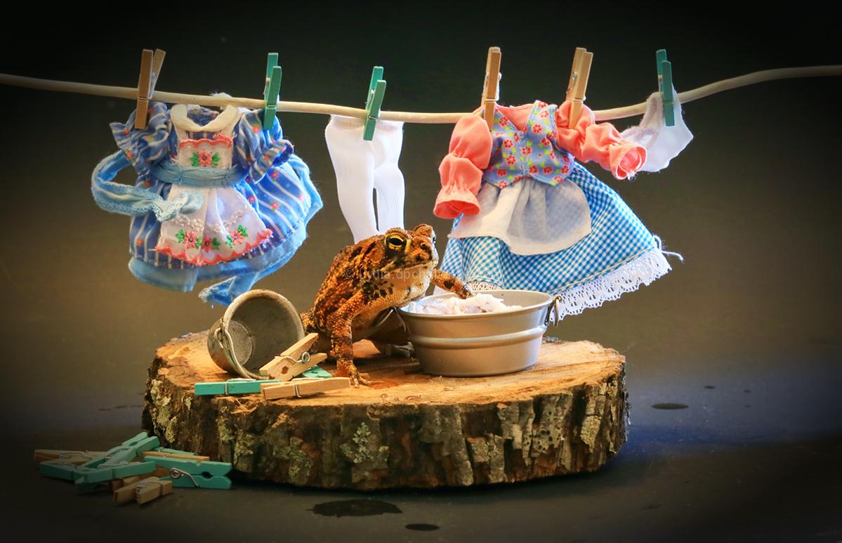 Soapy Summer Chores