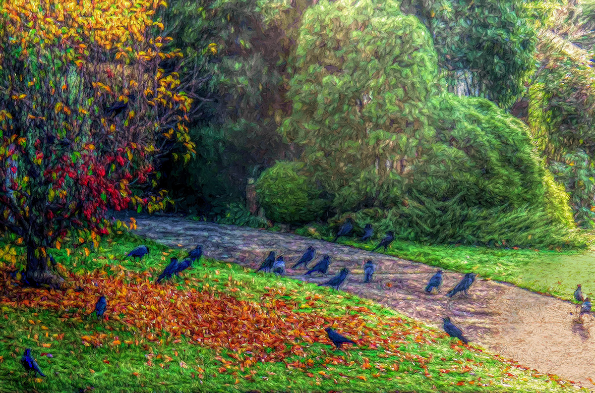 Autumn Crows and Crabapples
