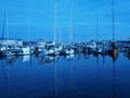 The Dark, Blue Sea