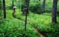 Day Hike