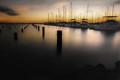 harbor lines