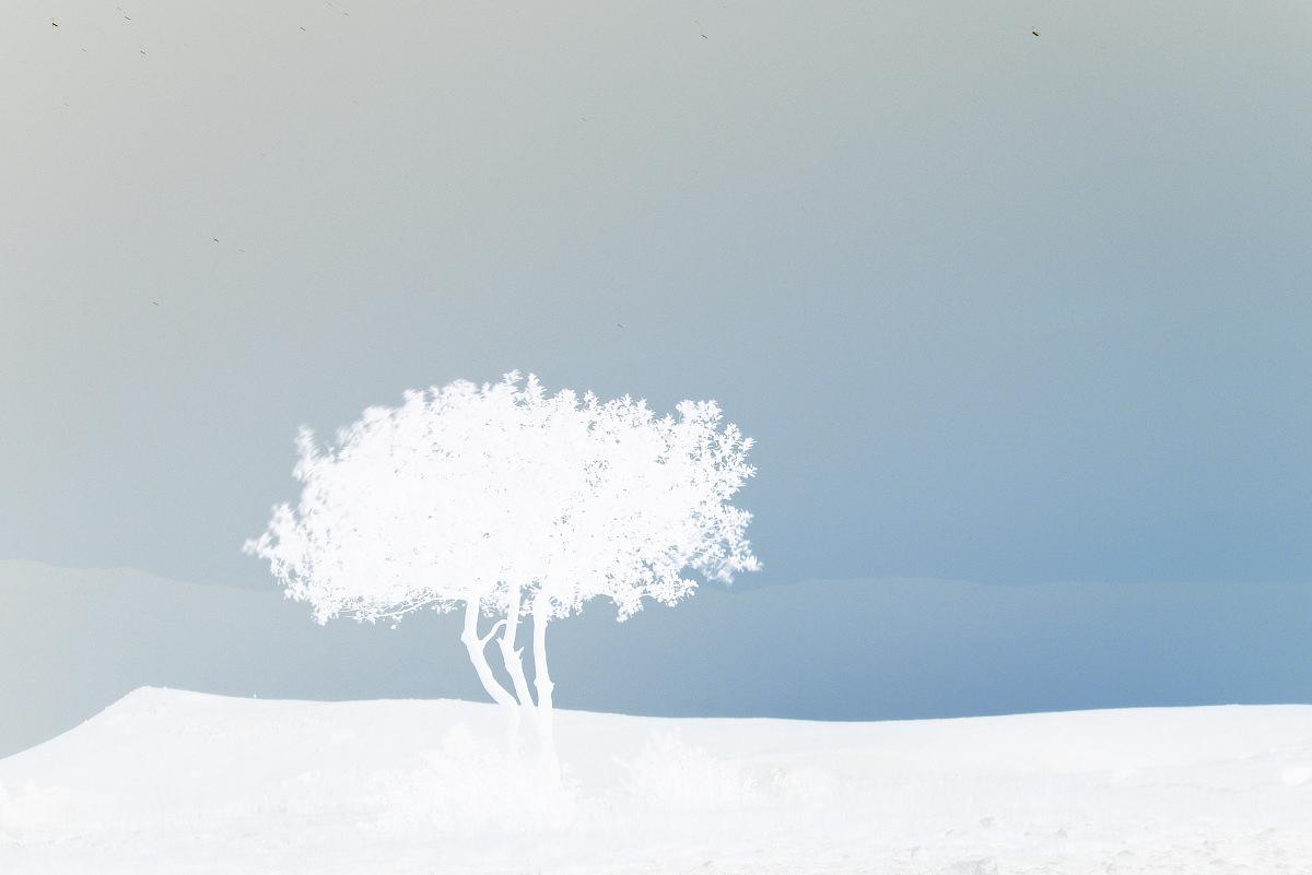 Imaginary snow