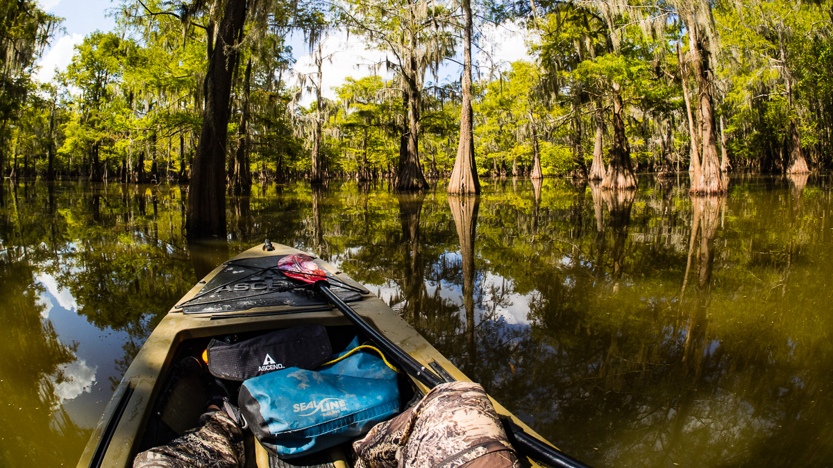 Just a Guy & His Kayak in a Swamp